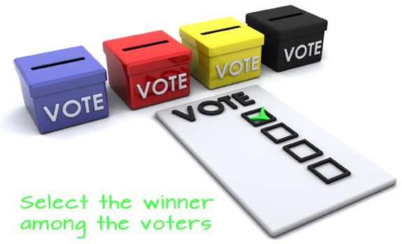 Select the winners of your promotion from among the voters
