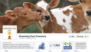 Dreaming-Cow-Creaming-timeline-facebook