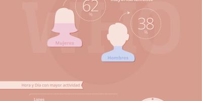 Infografía: Análisis de las campañas en redes sociales en 2013