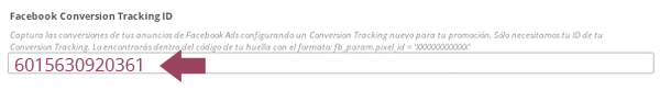 Incluir Facebook Conversion Tracking ID en Cool Tabs