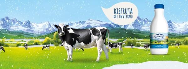 Central Lechera Asturiana: Disfruta del invierno